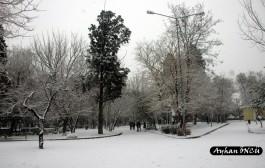 Kış Mevsiminde Çanakkale Halk Bahçesi
