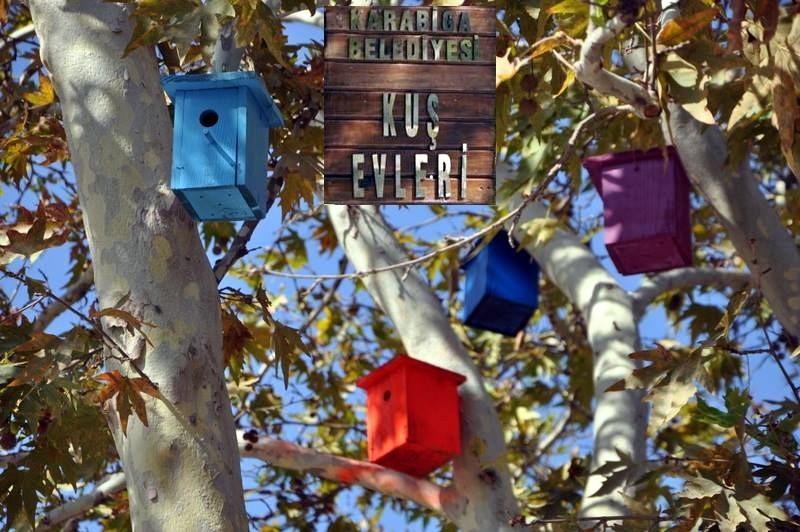 Karabiga'da Artık Kuşların da Evleri Var